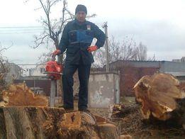 Спил деревьев Херсон и область измельчение веток вывоз. Без посредника