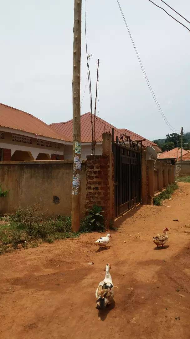 2 bedrooms house for sale with 2 boy's Quat 0