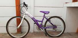 Loletta Girl's Bicycle