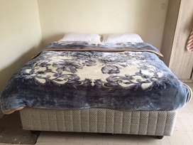 Queen Size Bed (negotiable)