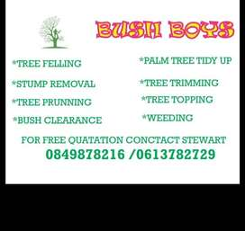 TREE FELLING AND TRIMMING SERVICES