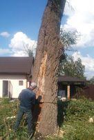 Обрезка спил удаление деревьев Киев. Корчевание пней вручную.