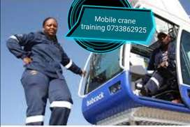 We renew and training:Fork lift, Reach truck, Truck mounted crane. Tlb