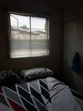 3x 1 bedroom place, shower and toilet, open plan kitchen and lounge