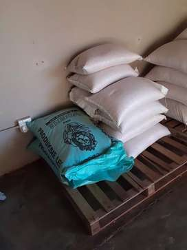 Yellow maize/ Crushed maize for sale