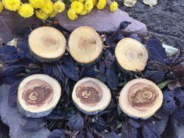Спил срез сруб дерево для декора