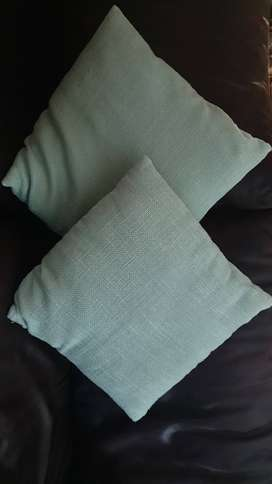 2 Woolworths scatter cushions