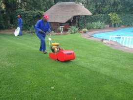 BUSINESS WITH BAKKIE AND TOOLS  FOR SALE/ CAR SWOP