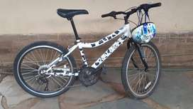 Raleigh bicycle 24 inch