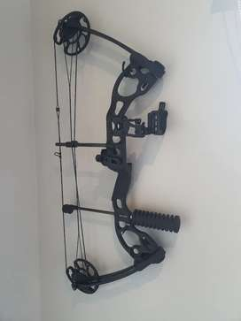 Compound Bow quest radical hunting bow