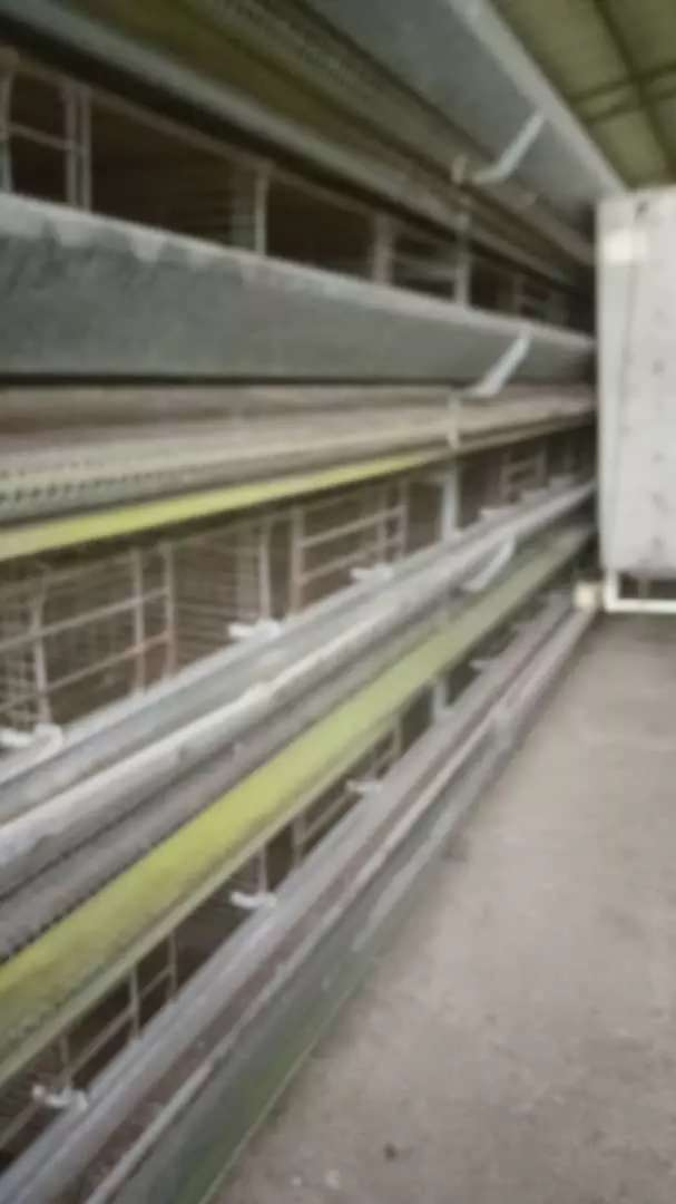 Battery Cage for sale 0