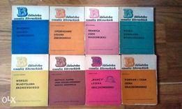 Biblioteka analiz literackich