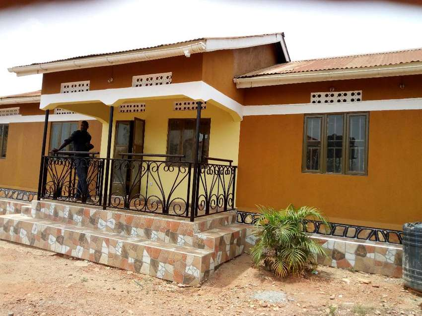 Stand alone house for rent in bukoto 0