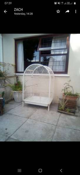 Big Parrot cage