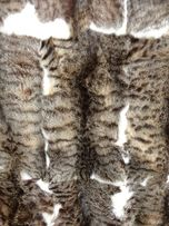 Шкура камышовой рыси