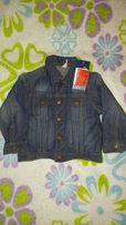 Новый, фирменный джинсовая курточка и шортики