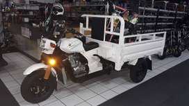 Cargo Tricycle 3 Wheel Motorcycle / Tipper Dumper Truck With Complet