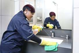 DOMESTIC WORKER / CLEANER