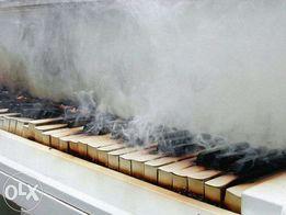 результативные домашние уроки игры на фортепиано и уроки сольфеджио