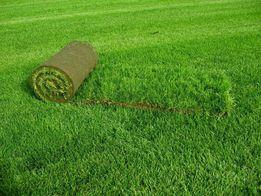 Ландшафтный дизайн.Озеленение.Укладка газона.Обслуживание