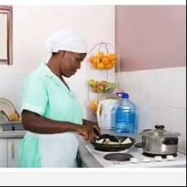 Zim domestic workers agent