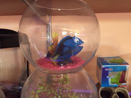 Kula dla rybek sklep zoologiczny Pirania Olsztyn