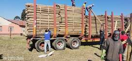 CCA Treated poles for sale