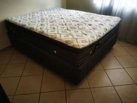 Sealy kings size bed