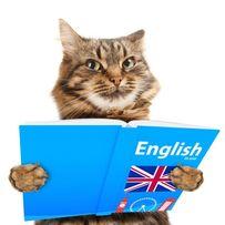 Он-лайн контрольные работы по английскому языку