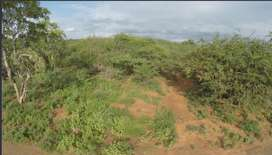 Bushveld Stand in Hoedspruit - Ideal for Flying Enthusiasts