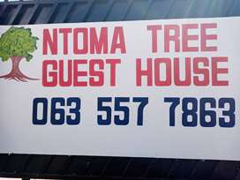 NTOMA TREE GUEST HOUSE