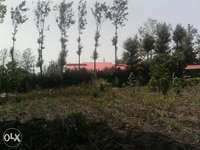 1/8 acre plot for sale 120m from kiserian rongai road 0
