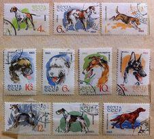 Марки почтовые Служебные и охотничьи собаки 1965 СССР
