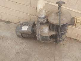 Swimming pool motor