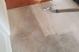 Deep cleaning of carpets