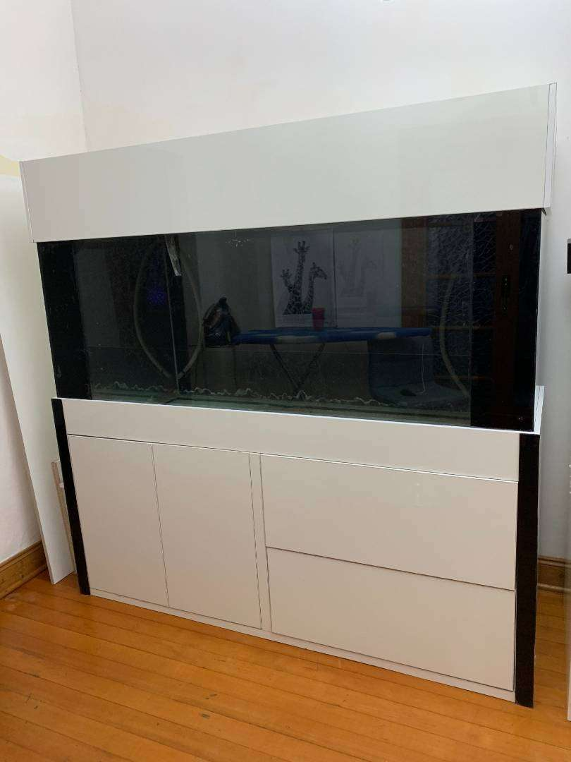 Fresh water fish tank for sale 0