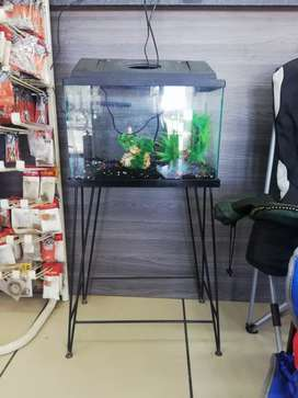 Fish tank starter kit with stand