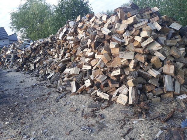 Drewno Kominkowe Opałowe Wołomin - image 2