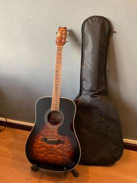 Washburn Acoustic Guitar, stand and bag