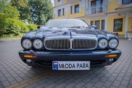 Auto do ślubu Limuzyna (samochód weselny) ślub, studniówka... - Jaguar