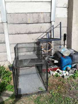 Bird and Rabbit Cage for Sale