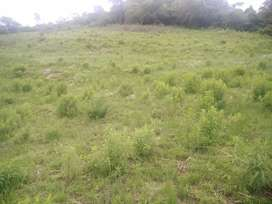 Big site for sale equals to 4plots