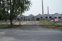 Hala na magazyn, produkcję do wynajęcia w Głownie 2.200 m2