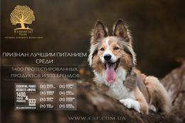 Essential Foods ( DK-GB) - лучший корм для собак и котов в Европе.