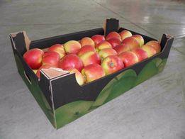 Гофро лоток для ягод и фруктов