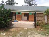 Classic 2 rooms apartments for rent in Mukono 0