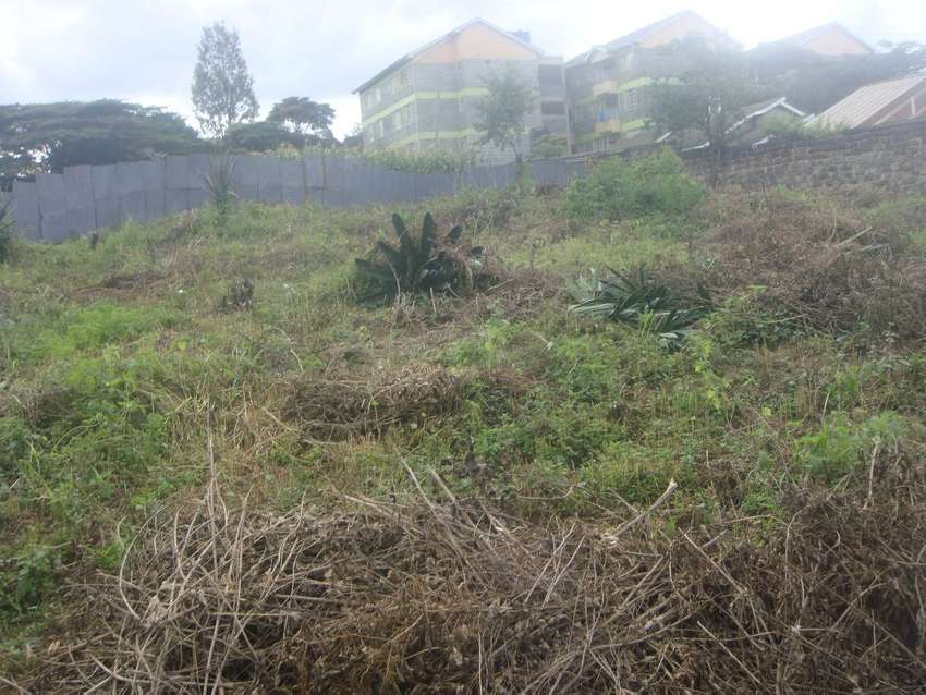 1/8 acres for sale in O/Rongai behind Tumaini S/Mkt near Green Castle. 0
