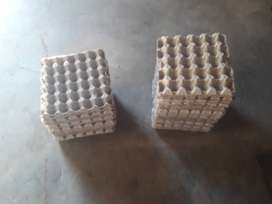 EGG TRAYS FOR SALE