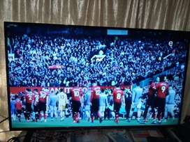 Sinotec 49 led TV for sell