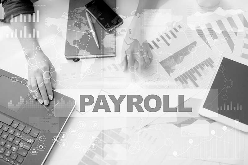 Payroll Services 0